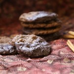 Cinnamon Chocolate Cookies Dipped in Dark Chocolate
