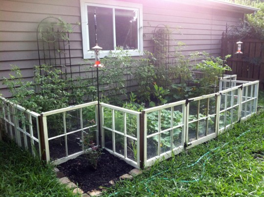 Vegetable Garden using Reclaimed Windows